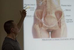 техники остеопатии беременных