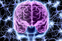 Задачи нейропсихологии