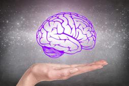 История нейропсихологии