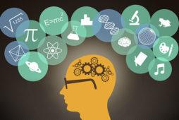 Нейропсихология памяти