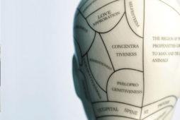 Что такое нейропсихология