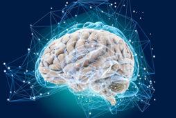 Нейропсихология игры и упражнения