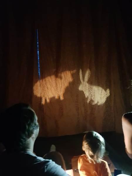 Театр теней в арт-терапии
